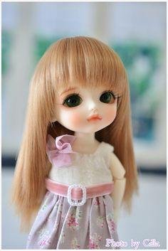 My Lati WoO Sophie