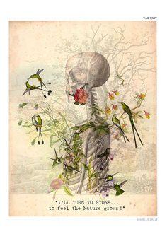 ' I'll turn to stone… to feel the Nature grows ! ' by Isabelle Dalle Day Of The Dead Artwork, Human Anatomy Art, Skeleton Art, Writing Art, Gcse Art, Skull And Bones, Skull Art, Botanical Illustration, Botanical Prints
