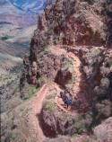 The trail down the Grand Canyon. #fourseasonguides