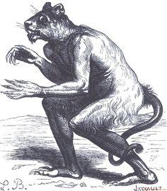 Demon Flauros from Collin de Plancy's 'Dictionnaire Infernal' (Louis Le Breton). Mythological Creatures, Mythical Creatures, Scary Legends, Creepy Cat, Demon Art, Legendary Creature, Cryptozoology, Fantastic Beasts, Occult