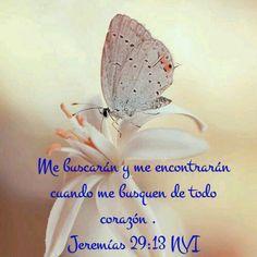 Jeremías 29: 13