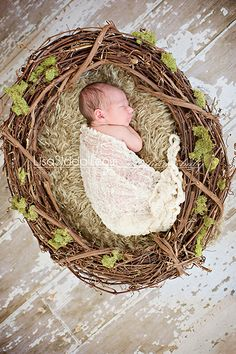 newborn boy in nest... i can't decide if I like this or not...