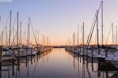 East Beach Marina across from East Beach Luxury Homes in Norfolk, Virginia by destination photographer Paige Overturf