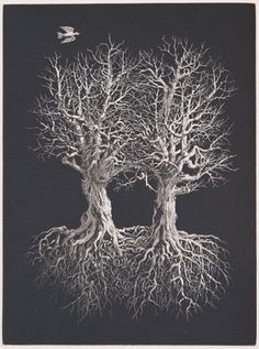 """Thomas Wood, """"Two Trees II,"""" 2004, etching with aquatint"""