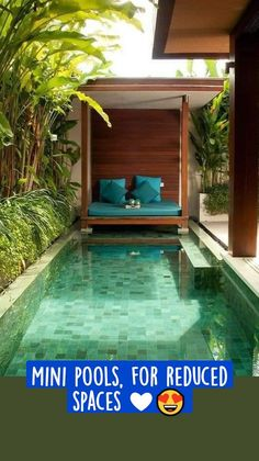 Small Swimming Pools, Small Pools, Swimming Pools Backyard, Swimming Pool Designs, Pool Landscaping, Landscaping Design, Swimming Pool Tiles, Lap Pools, Indoor Pools