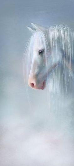 Heavenly White Horse: A Kindred Spirit. paint horses