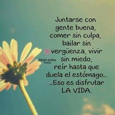 La imagen puede contener: planta, flor y texto Words Quotes, Me Quotes, Sayings, Motivational Phrases, Inspirational Quotes, Spanish Quotes, Amazing Quotes, Inner Peace, Positive Thoughts