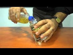 Experiments on refraction, reflection and total internal reflection - YouTube