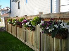 Affordable Landscaping Near Me Hanging Plants On Fence, Fence Planters, Hanging Flower Baskets, Side Yard Landscaping, Backyard Fences, Backyard Projects, Fence Design, Garden Design, Lawn And Garden