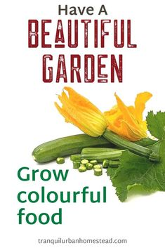 When you first start to grow food, it may seem a bit dull compared to growing only flowers. However you can still have a beautiful garden even with edible plants. Grow Food, Grow Your Own Food, Edible Plants, Edible Flowers, Backyard Layout, Garden Maintenance, Colorful Plants, Healthy Fruits, Garden Structures