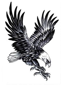 Cool Eagle Tattoo for Men Waterproof Temporary Tattoos Water . Tattoos And Body Art eagle tattoo B Tattoo, Tattoos 3d, Tattoo Hals, First Tattoo, Temporary Tattoos, Tattoos For Guys, Celtic Tattoos, Tattoo Quotes, Belly Tattoos