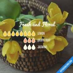 Oils for Babies and Infants Fresh and Floral - Essential Oil Diffuser BlendFresh and Floral - Essential Oil Diffuser Blend Jasmine Essential Oil, Essential Oils Guide, Essential Oil Scents, Essential Oil Perfume, Essential Oil Diffuser Blends, Essential Oil Uses, Doterra Essential Oils, Diffuser Recipes, Aromatherapy Oils