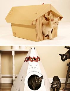 Loyal Luxe Cat Houses: Totally Outside The Box