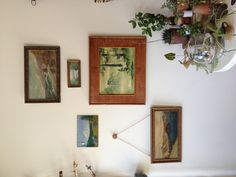 Art collection growing at Maven Collective