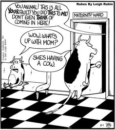 Cows May Soon Be In The Unemployement Line….A Moooooving Story