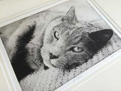 Pet Art   Dog Portraits   Greyboy Pet Prints
