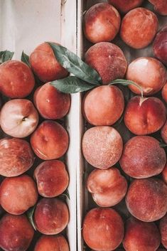 Pfirsiche, bunt, Obst, - Iphone hintergrundbild - - Health and wellness: What comes naturally Peach Aesthetic, Summer Aesthetic, Aesthetic Food, Aesthetic Makeup, Aesthetic Vintage, Wallpaper Winter, Orange Wallpaper, Pastel Wallpaper, Colorful Fruit