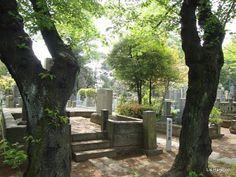 Yanaka - one of Tokyo's oldest cemeteries