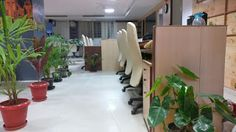 Shared officespace in Bangalore at Common Desk: Shared office space in Bangalore at affordable pri...