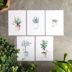 All that talk of plants a few weeks ago got us feeling inspired! Download these free plant printables below! Each one was individually hand-painted and lettered by one of our very own amazing artists. You'll even spot a few of the...