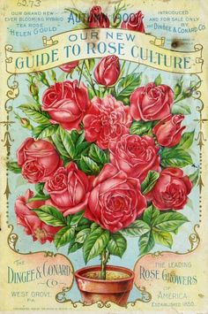 Flower Catalogs, Garden Catalogs, Seed Catalogs, Biscuit, West Grove, Decoupage, Vintage Seed Packets, Garden Labels, Seed Packaging