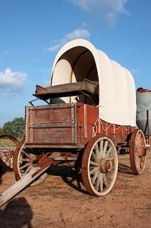 I would use wagons to help carry crops if needed. I would also use them for my horses when traveling if I need too.