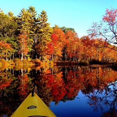 Kayaking and leaf peeping are both good fun on their own. Together, they're even better! Thanks to @jennysiphonephotography for the photo.