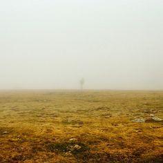#vallter #camprodon #fog