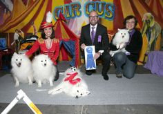 Find out which breeds took this year's top honors of the Meet the Breeds Booth Contest, decided by a panel of judges based on creativity, number of dogs, and friendliness of the owners.