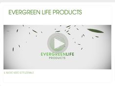 Evergreen Life Products