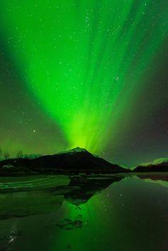 Aurora borealis display over Turnagain Arm, Chugach National Forest, Alaska, in early November.Copyright Carl Johnson