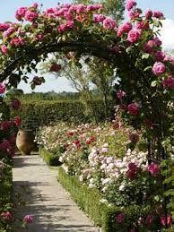 I never promised a rose garden.