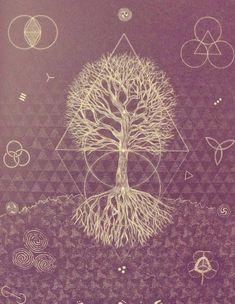 holy mathematics sacred geometry and divine chaos   Sacred Geometry