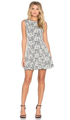 Bishop + Young Lace Skater Dress in Grey | REVOLVE