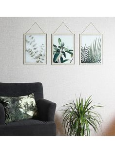 Arthouse Set 3 Botanical Framed Prints - One Colour - Kitchen Plants, Blank Walls, Hanging Signs, Spare Room, One Color, Colour, Home Art, Home Kitchens, Sweet Home