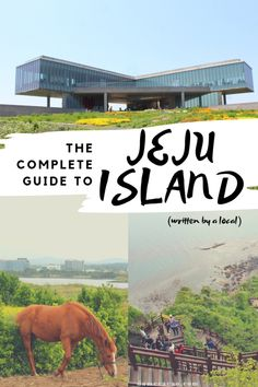 to stay on Jeju Island doesn't have to be a tough question! Between 3 UNESCO World Heritage sites and the delicious local foods this massive guide to Jeju will answer any lingering questions you have about traveling Korea and planning your Jeju itinerary! South Korea Travel, Asia Travel, Japan Travel, Travel Nepal, Solo Travel, Places To Travel, Travel Destinations, Places To Visit, Travel Tips