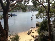 Berry Island Reserve, Wollstonecraft Picnic Spot, Sydney Bushwalking, older kids playground and dogs welcome