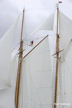 Not a bad view from up there. #sailing