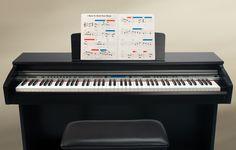 EZP8   Lowrey Organ Company Digital Piano