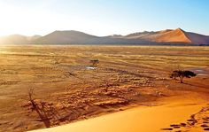 Namibia is sere but breathtaking, with an impressive canyon, otherworldly landscapes, posh lodges and a town right out of Bavaria. And the night sky? Impressive. Pictured: Sossusvlei, the country's top attraction.