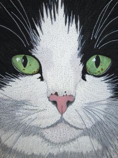 "Fiber Art Options: A cat portrait. ""Friso"" detail (2012) by Susan Brubaker Knapp. This is a wholecloth painted piece that is heavily thread sketched"