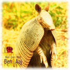 Ben | Aaj
