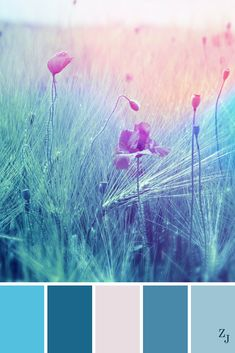 ZJ Colour Palette 551 #colourpalette #colourinspiration