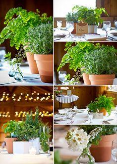 Plantas y verde para los invitados.. eco friendly wedding decor on COUTUREcolorado