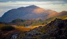 The Ring of Kerry is one of Ireland's most scenic areasNone