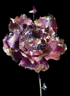 Large peony sculpture made of titanium in shades of pink and brown with colorful butterflies and a pistil of rubies, amethysts and citrines at The Dreamlike World Of Wallace Chan On Exhibit In Hong Kong.