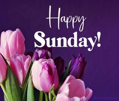 Sunday Morning Wishes, Blessed Morning Quotes, Sunday Morning Humor, Good Day Wishes, Good Morning Sunday Images, Blessed Sunday, Good Morning Greetings, Good Morning Good Night, Happy Sunday Messages