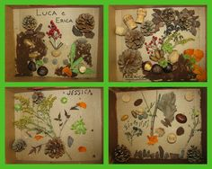 Reggio Emilia, Italy These nature-walk collages were presented in box lids -- creating a shadow-box and frame all in one.