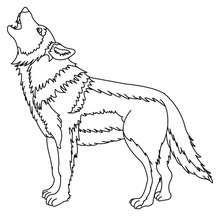 christmas wolf coloring pages | 1000+ images about stained glass on Pinterest | Stained ...