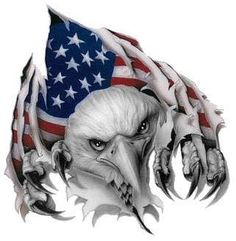 American Eagle by Drake-Dragon-King on DeviantArt Patriotic Pictures, Eagle Pictures, American Flag Eagle, American Pride, I Love America, God Bless America, Eagle Drawing, Patriotic Tattoos, Eagle Art